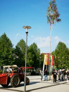 Kein Maibaum vor dem Rathaus